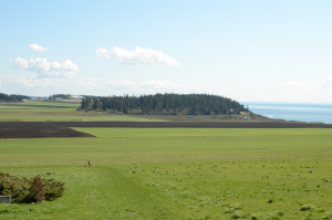 ebey-plateau-and-beach