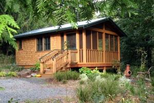 cabin-in-autumn