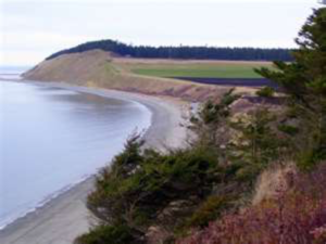 island-shore